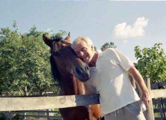Os Nove Princípios Éticos do Proprietário de Cavalos.